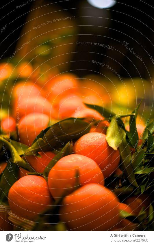 be my clementine Ernährung orange Gesundheit Frucht liegen süß rund viele lecker reif Markt Vitamin Bioprodukte Vegetarische Ernährung Geschmackssinn Marktstand
