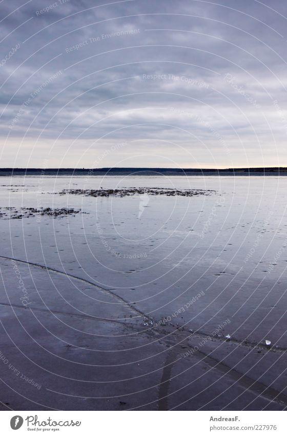 Eiszeit Umwelt Natur Landschaft Wasser Himmel Wolken Gewitterwolken Winter Wetter schlechtes Wetter Unwetter Sturm Frost Seeufer kalt grau trist karg gefroren