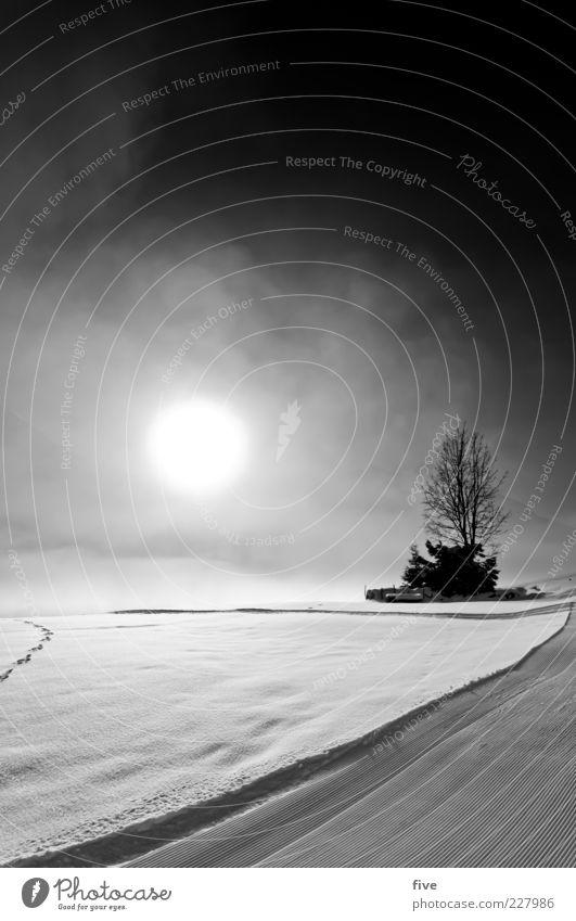 neuschnee Himmel Natur Baum Pflanze Sonne Wolken Winter kalt Schnee Berge u. Gebirge Wege & Pfade hell Eis Nebel Sträucher Frost