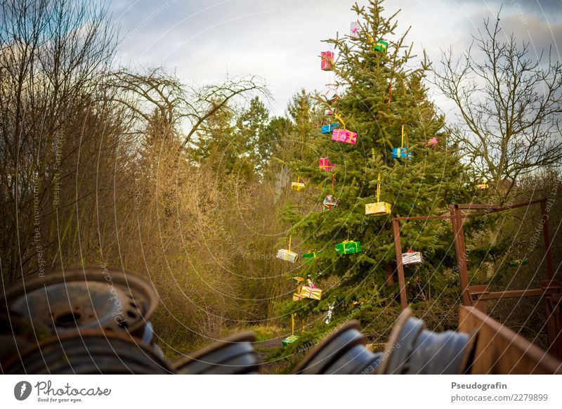 Weihnachts-Idylle Dekoration & Verzierung Weihnachten & Advent Winter Baum Dorf Stadtrand alt außergewöhnlich hässlich einzigartig trashig Vorfreude bizarr