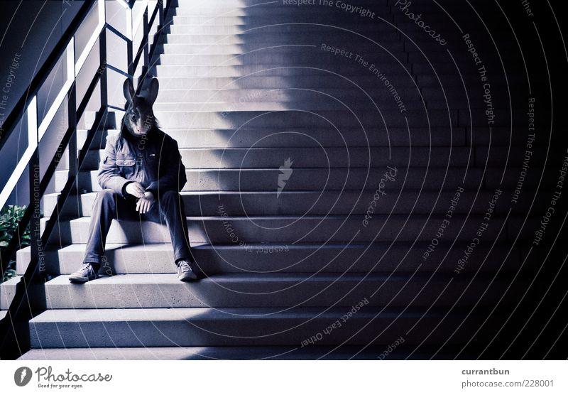 i'm a rabbit.. Mensch Mann sitzen warten Treppe außergewöhnlich Maske Geländer skurril Zigarette Hase & Kaninchen Grotesk