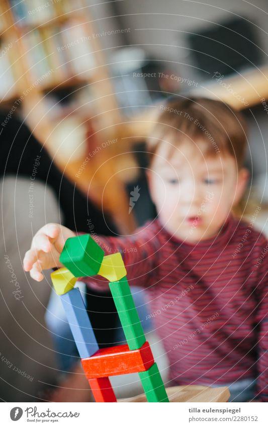 Baumeister Freizeit & Hobby Spielen Kinderspiel Kleinkind Junge Kindheit 1 Mensch Spielzeug bauen berühren Bewegung fallen festhalten geduldig Neugier Interesse