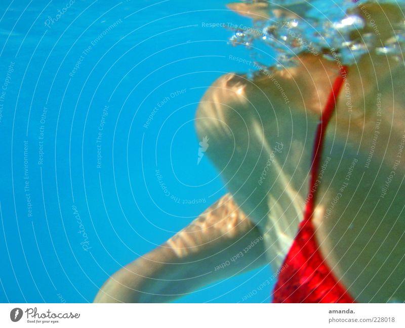 Unterwasser Mensch Jugendliche blau Wasser rot Ferien & Urlaub & Reisen Sommer Erwachsene feminin Bewegung Freizeit & Hobby Schwimmen & Baden Haut nass frei