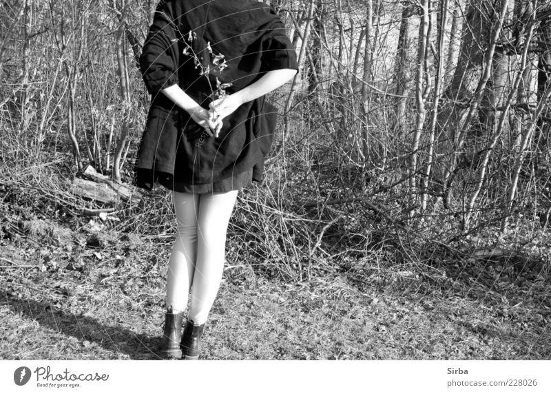 Bald Wald Natur Jugendliche weiß Baum Winter schwarz grau Gras Beine Fuß Zufriedenheit Schuhe Rücken Haut Junge Frau festhalten