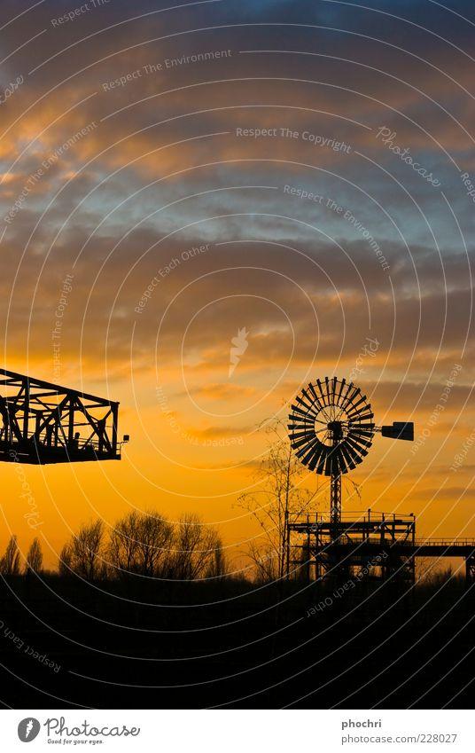 Windmühle Himmel Baum schwarz gelb gold Technik & Technologie Windkraftanlage Stahl drehen Abenddämmerung Dürre Windrad Sonnenuntergang Wolkenhimmel