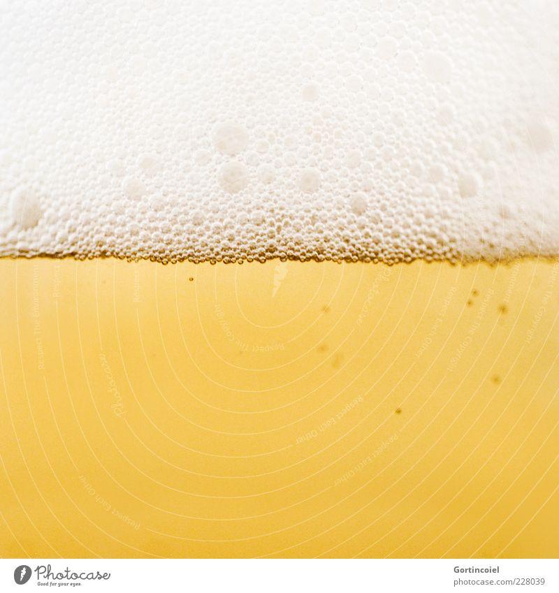 Zum Wohl gelb Lebensmittel gold Getränk Bier lecker Alkohol Alkoholsucht Bierschaum