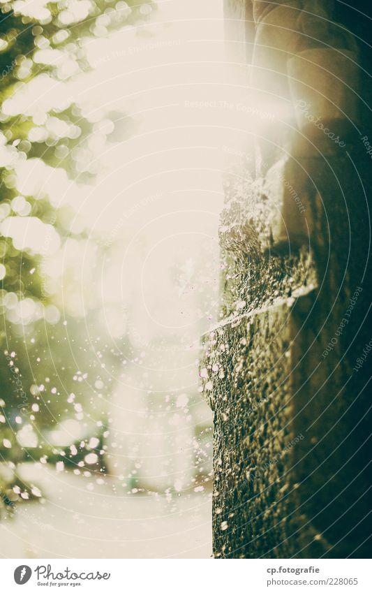 Der Tanz in der Sonne Wasser Stein hell nass Wassertropfen Urelemente Tropfen feucht Schönes Wetter Säule blenden Steinwand