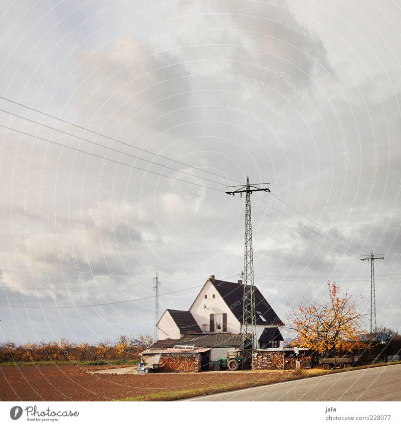 eigenheim Landschaft Himmel Wolken Herbst Pflanze Baum Feld Haus Bauwerk Gebäude Architektur trist Strommast Bauernhof Traktor Farbfoto Außenaufnahme