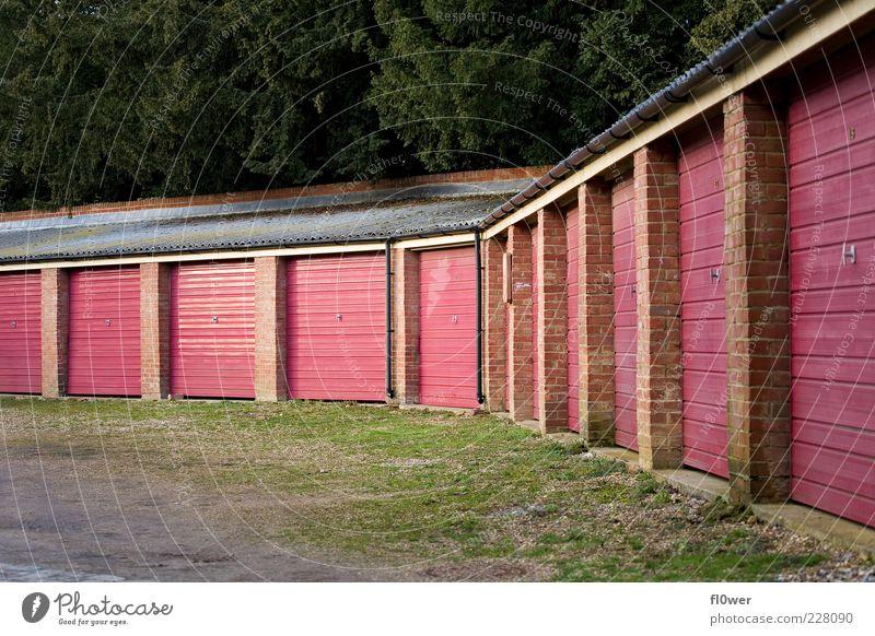 vieeeeelllle Garagen Natur alt grün rot Umwelt Gras Gebäude rosa Platz Sicherheit Schutz viele Dachrinne Mittelstand Einfahrt