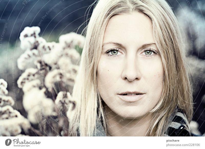 Augenblick schön feminin Junge Frau Jugendliche Gesicht 18-30 Jahre Erwachsene blond langhaarig beobachten Blick blau Frühlingsgefühle Leidenschaft Farbfoto
