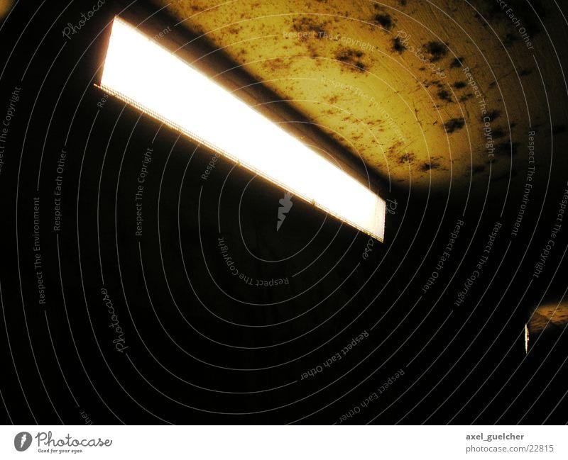 Angst Lampe dunkel hell Schimmelpilze Pilz Fototechnik Unterführung