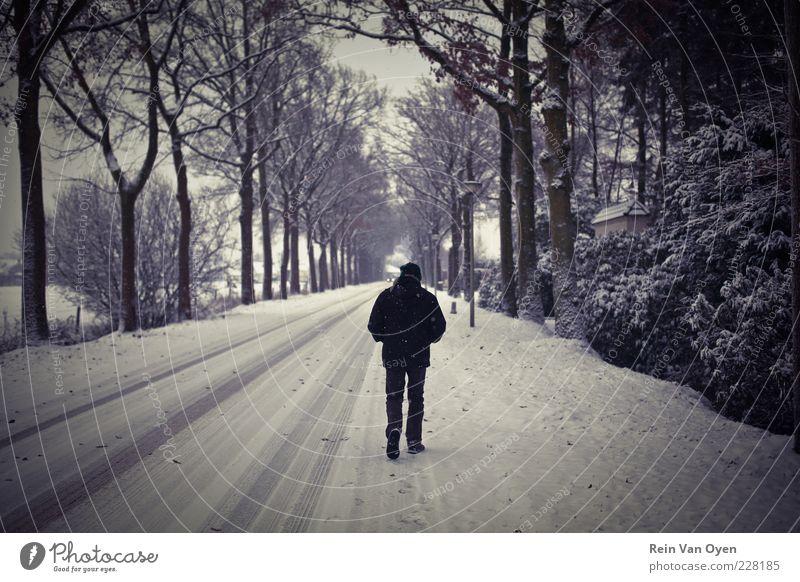 Wandern im Schnee Mensch maskulin Mann Erwachsene 1 45-60 Jahre Umwelt Baum Einsamkeit Straße Gasse Perspektive Symmetrie Schneehöhe weiß schwarz Brennpunkt