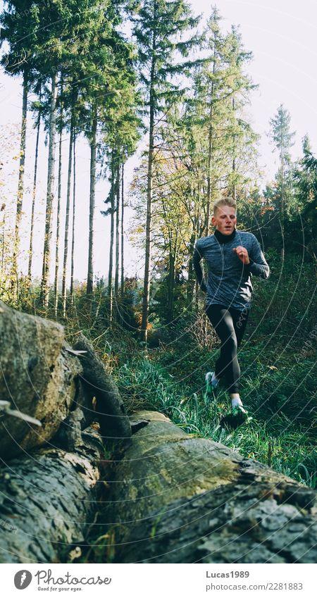 Trail Run Mensch Natur Jugendliche Mann Sommer Junger Mann Baum Wald 18-30 Jahre Erwachsene Umwelt Wiese Sport Bewegung maskulin wandern