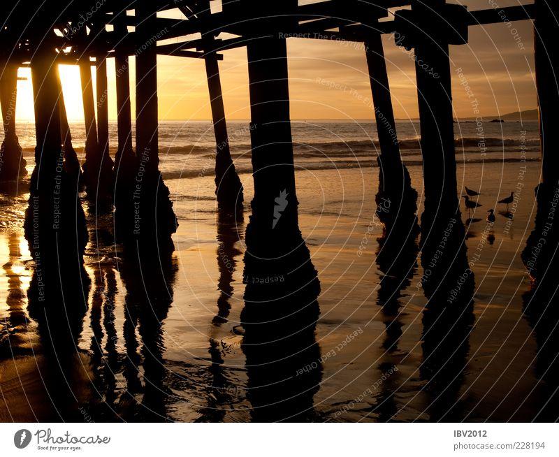 Santa Monica Pier Ferne Sand Wasser Himmel Sonne Sonnenaufgang Sonnenuntergang Sonnenlicht Wellen Küste Strand Meer Menschenleer Freiheit Anlegestelle Pazifik