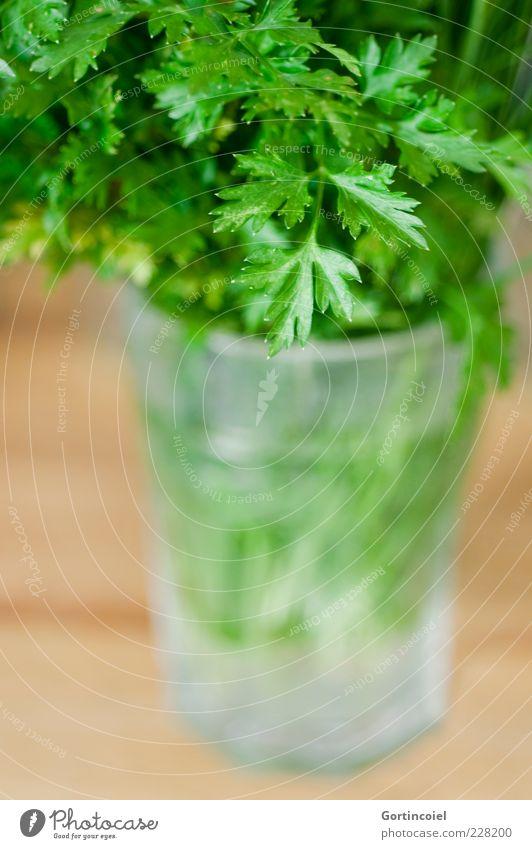 Petersilie grün Blatt Ernährung Lebensmittel Glas frisch Kräuter & Gewürze Bioprodukte Vegetarische Ernährung Foodfotografie