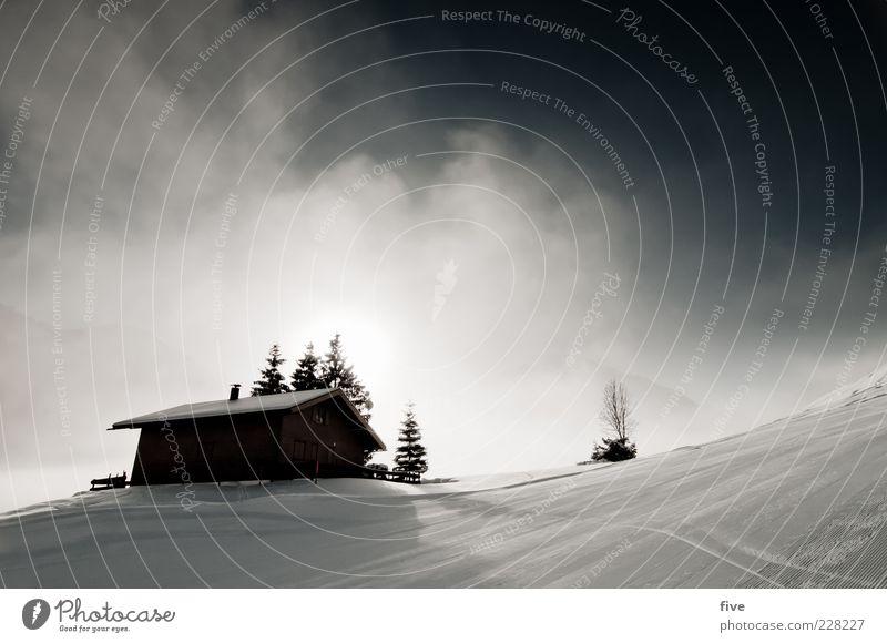 hütte Natur Landschaft Himmel Wolken Winter Wetter Nebel Schnee Pflanze Baum Hügel Alpen Berge u. Gebirge Haus Hütte hell kalt Stimmung Neuschnee Farbfoto