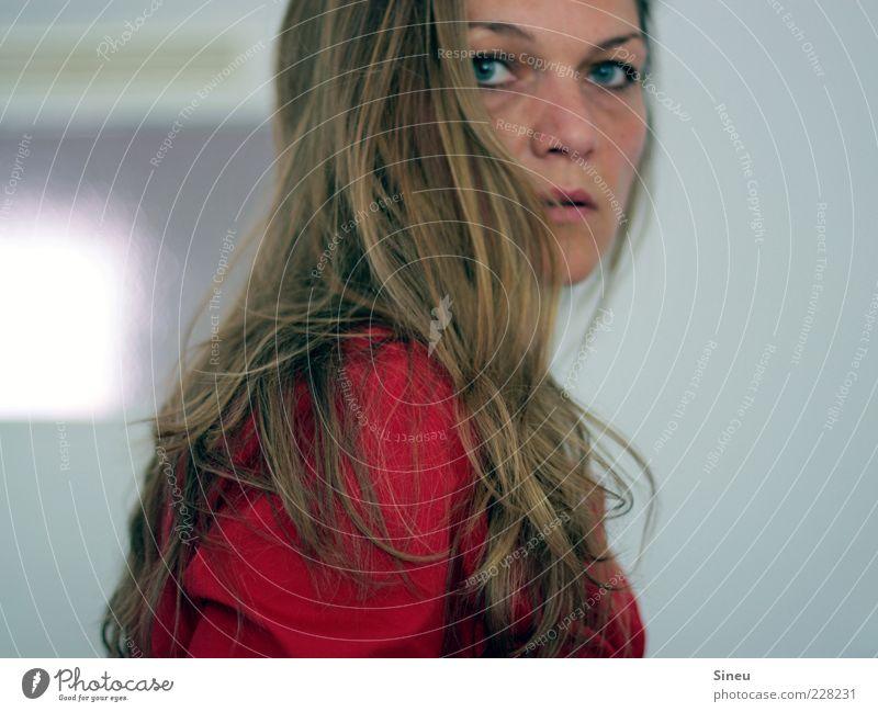 Schrecksekunde Mensch feminin Frau Erwachsene Haare & Frisuren Gesicht 1 brünett langhaarig beobachten drehen Blick rot Überraschung Angst Entsetzen Todesangst