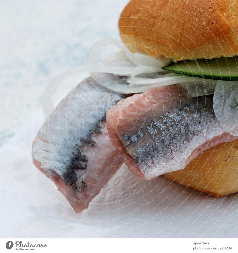 Urlaub mit Fischbrötchen Lebensmittel Brötchen Zwiebelringe Gurkenscheibe Ernährung Frühstück Mittagessen Abendessen Büffet Brunch Totes Tier 1 lecker Kalorie
