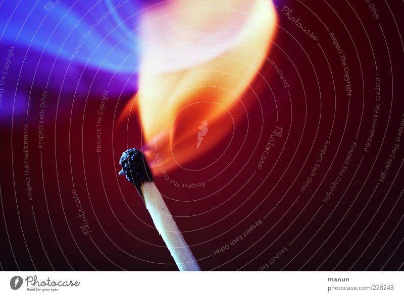 Feurio Streichholz Feuer Flamme leuchten heiß hell natürlich schön rot Idee brennen zündend Farbfoto Nahaufnahme Detailaufnahme Menschenleer Textfreiraum links