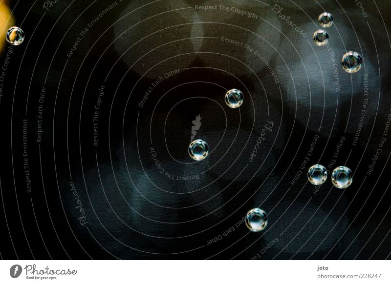 tanz der moleküle Wasser schwarz klein Zufriedenheit Hintergrundbild frei Wassertropfen ästhetisch mehrere Zukunft Hoffnung rund Tropfen Vergänglichkeit Klarheit fallen