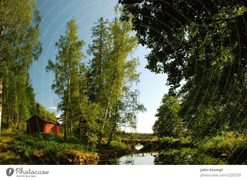ich trink drüber nach Natur Landschaft Sommer Schönes Wetter Baum Wald Teich See Schweden Hütte blau grün rot Idylle Zufriedenheit Reflexion & Spiegelung Wasser