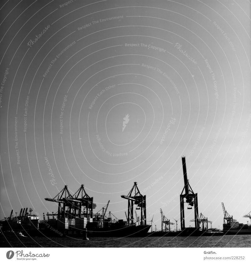 Die gewaltigen Tiere mit metallenen Krallen.. Stadt schwarz grau Metall Hamburg Güterverkehr & Logistik Fluss Industriefotografie Hafen Wolkenloser Himmel Kran Wasseroberfläche Container gigantisch Elbe Hafenstadt