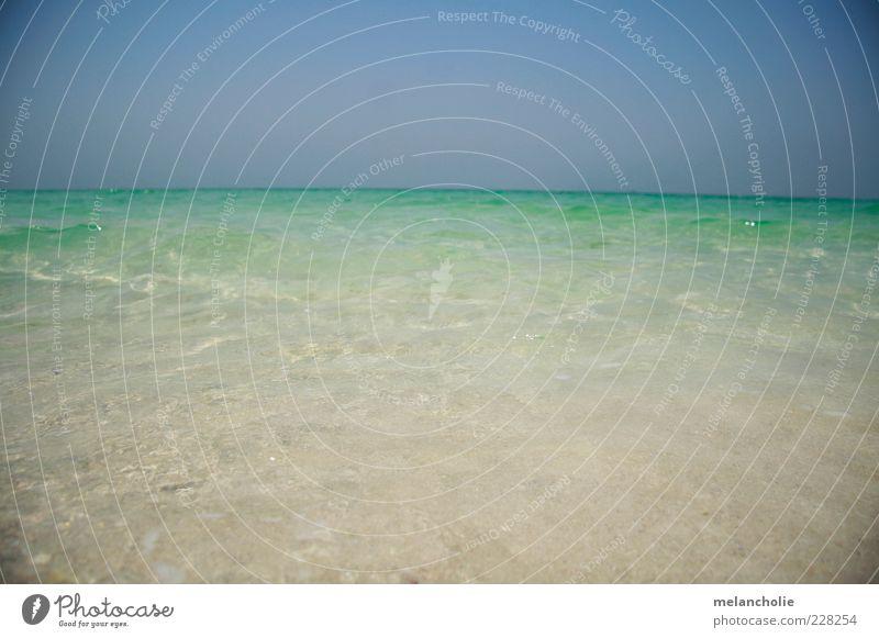 Dubai Wasser Himmel Sommer Schönes Wetter Meer Sand genießen Ferien & Urlaub & Reisen exotisch frei Unendlichkeit nass natürlich blau grün Gefühle Zufriedenheit