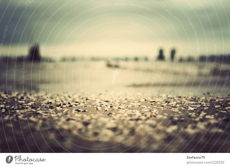 Natur Sommer Freude Strand Einsamkeit Ferne Gefühle Freiheit Stein Denken Stimmung Küste Deutschland Erde Frieden einfach