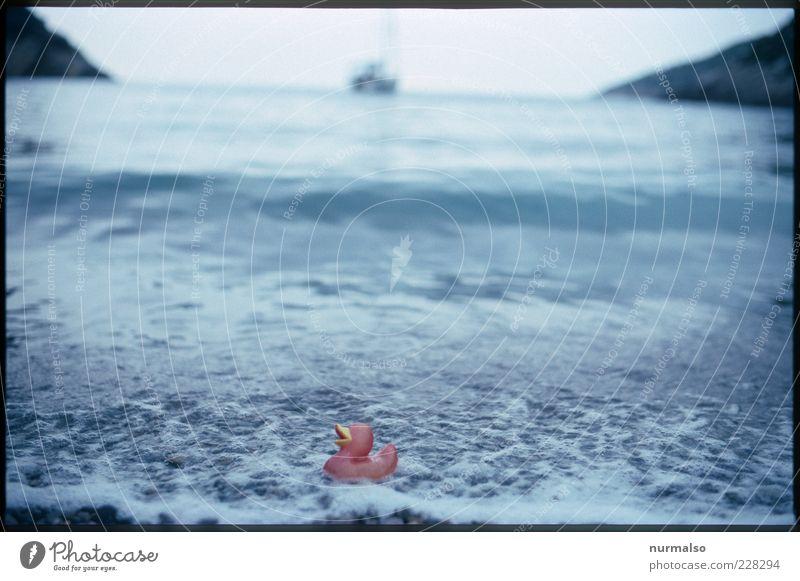 gestrandet Natur Sommer Meer Strand Ferne Umwelt Freiheit Küste Wellen Schwimmen & Baden Insel Lifestyle Unendlichkeit trashig genießen Im Wasser treiben