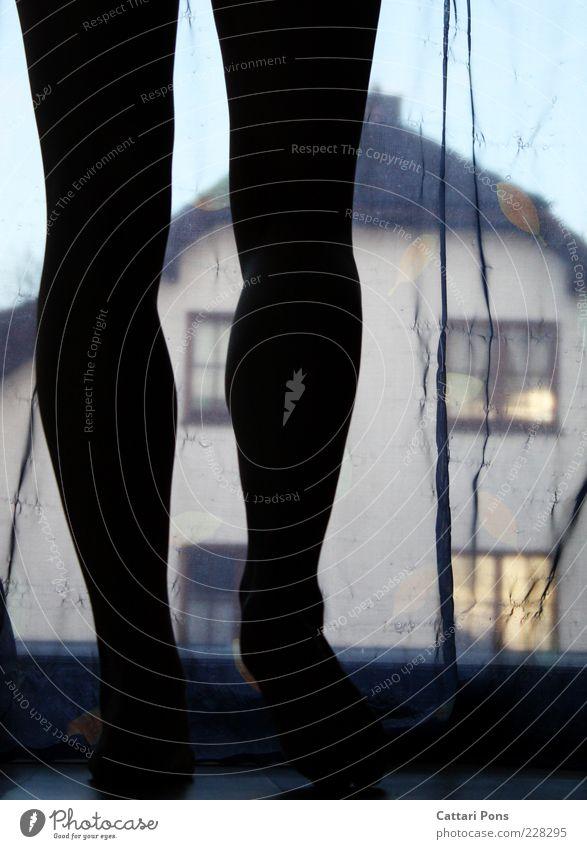 starting Beine Fuß 1 Mensch Haus Fenster Gardine beobachten gehen stehen Bewegung Morgen Morgendämmerung Silhouette Schatten Farbfoto Innenaufnahme Tag