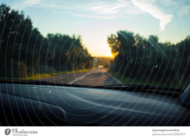 Road Trip Ausflug Abenteuer Ferne Freiheit Landschaft Sonnenaufgang Sonnenuntergang Sommer Schönes Wetter Wald Verkehrsmittel Verkehrswege Straße PKW