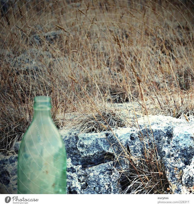 Keine Cola in Angola! Stein Flasche Flaschenhals leer Grassteppe Farbfoto Außenaufnahme Detailaufnahme Textfreiraum rechts Tag Menschenleer Einsamkeit 1