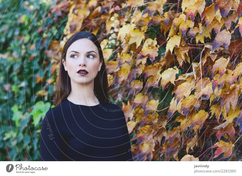 Schöne junge Frau mit Herbstblättern. Mensch Jugendliche Junge Frau schön weiß 18-30 Jahre Straße Erwachsene Lifestyle feminin Stil Glück Haare & Frisuren Mode