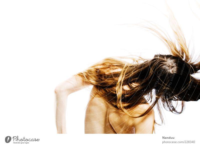 Alles abschütteln Mensch feminin Haare & Frisuren 1 18-30 Jahre Jugendliche Erwachsene rebellisch dünn langhaarig Dynamik Farbfoto Studioaufnahme
