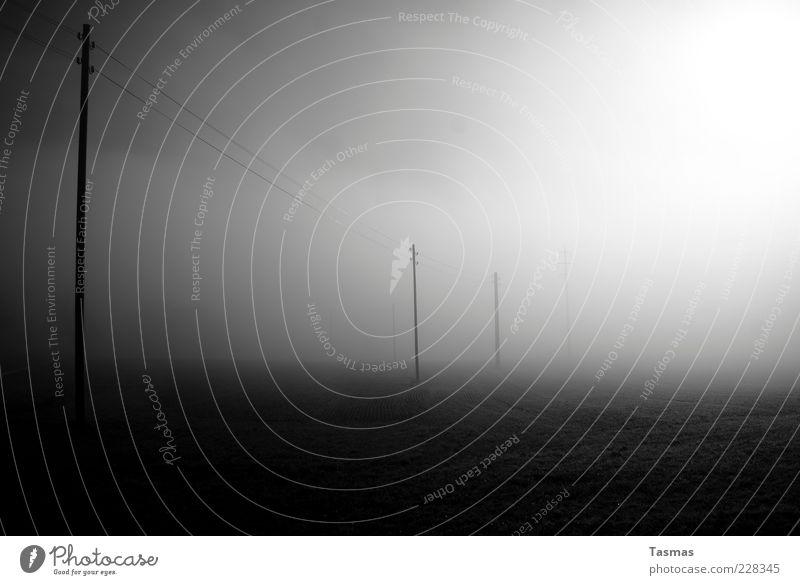 (Don't) Look Back Into The Sun Sonne ruhig kalt grau Nebel trist Telekommunikation Strommast Telefonmast Nebelbank Morgennebel Nebelschleier Telefonleitung Nebeldecke