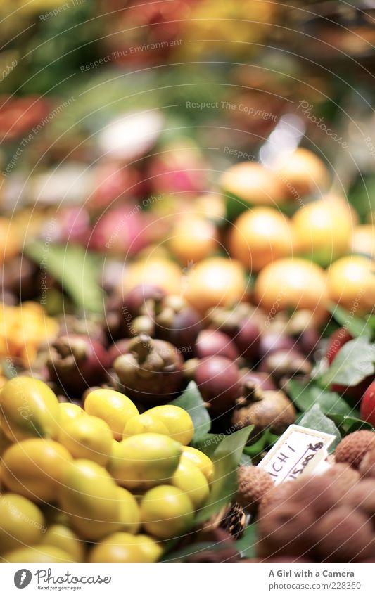 ein großes Angebot an exotischen Früchten gelb Lebensmittel klein Gesundheit Frucht außergewöhnlich violett lecker Markt Stapel Vitamin Bioprodukte Zitrone Ware