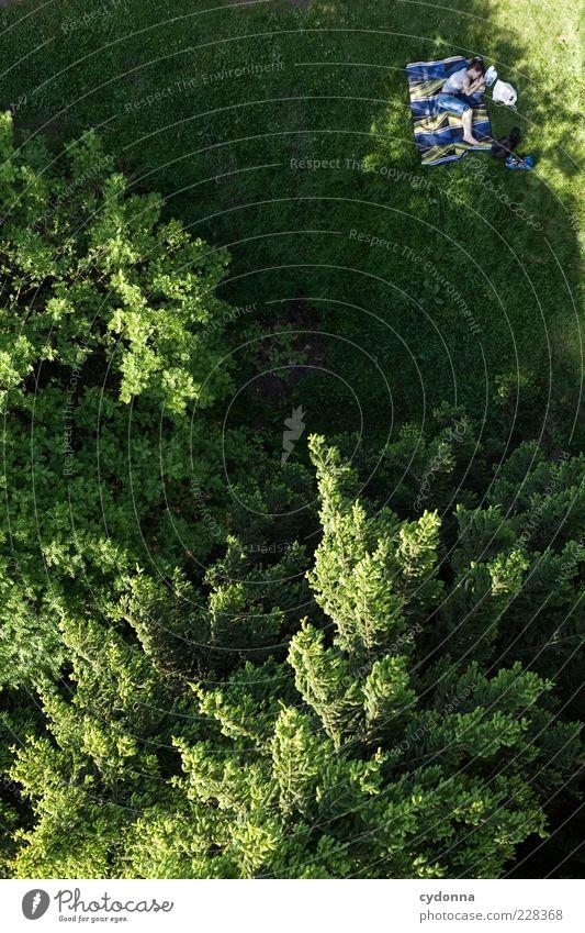 'Der da oben' is watching you Frau Mensch Natur Baum Ferien & Urlaub & Reisen Sommer ruhig Einsamkeit Wald Erholung Leben Wiese Freiheit Umwelt Zufriedenheit