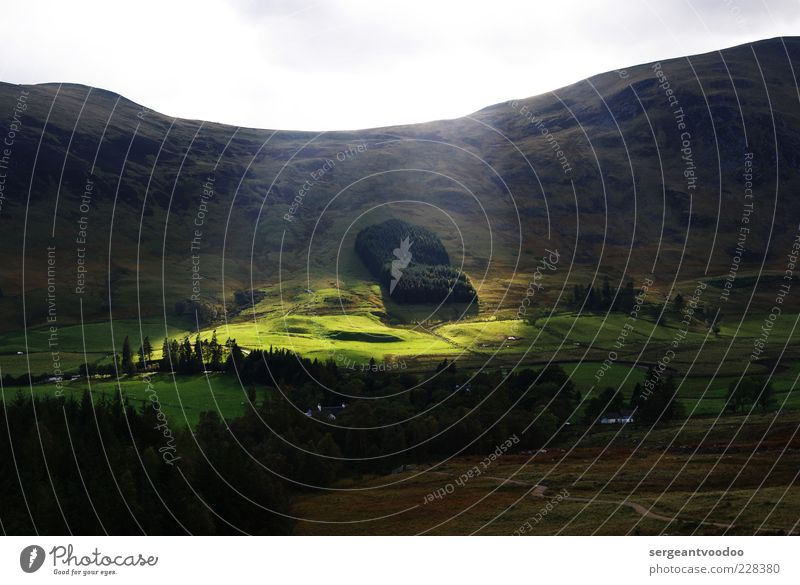 Licht aus, Spot an Umwelt Natur Landschaft Pflanze Himmel Horizont Sonne Sonnenlicht Wetter Wald Hügel Berge u. Gebirge Highlands Schottland Großbritannien