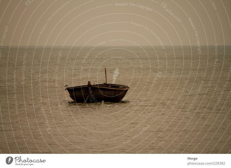 Natur Meer Einsamkeit träumen Umwelt Ruderboot