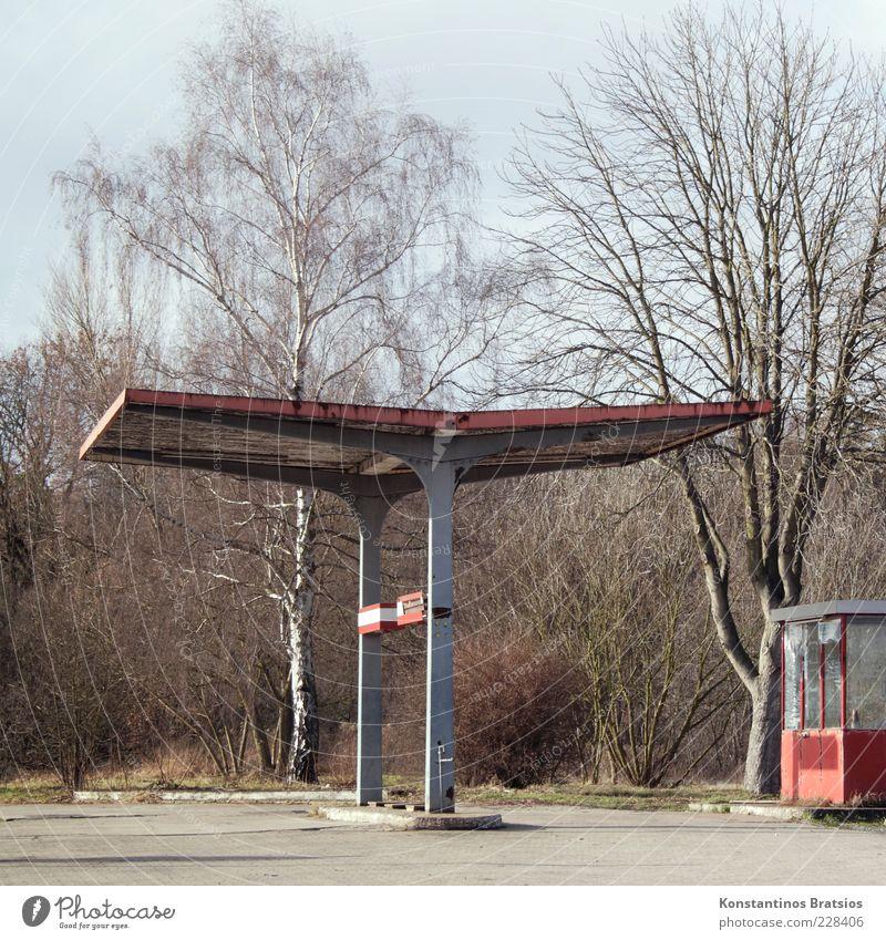 rotten gas station Energiekrise Schönes Wetter Baum Hütte Tankstelle alt kaputt grau Krise Farbfoto Außenaufnahme Menschenleer Tag Starke Tiefenschärfe