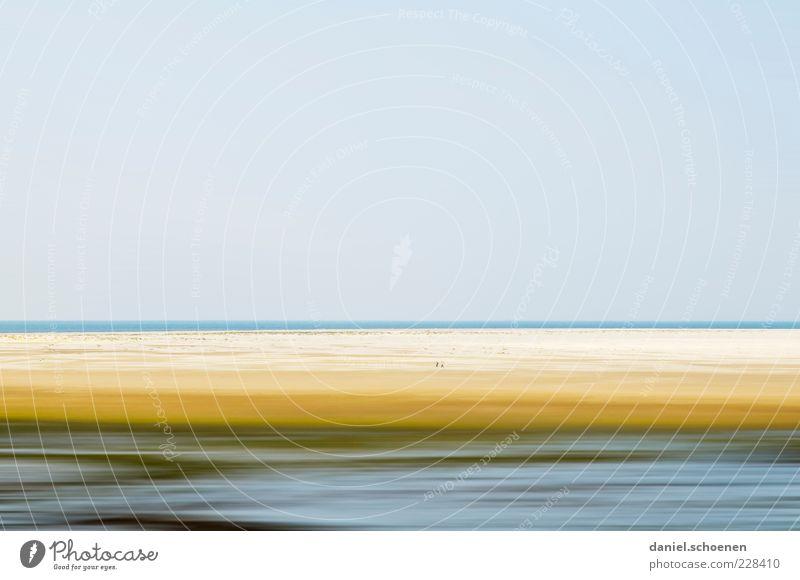 Amrum Ferne Freiheit Sommer Strand Meer Insel Umwelt Natur Landschaft Sand Wasser Himmel Wolkenloser Himmel Schönes Wetter Wind Küste blau Horizont