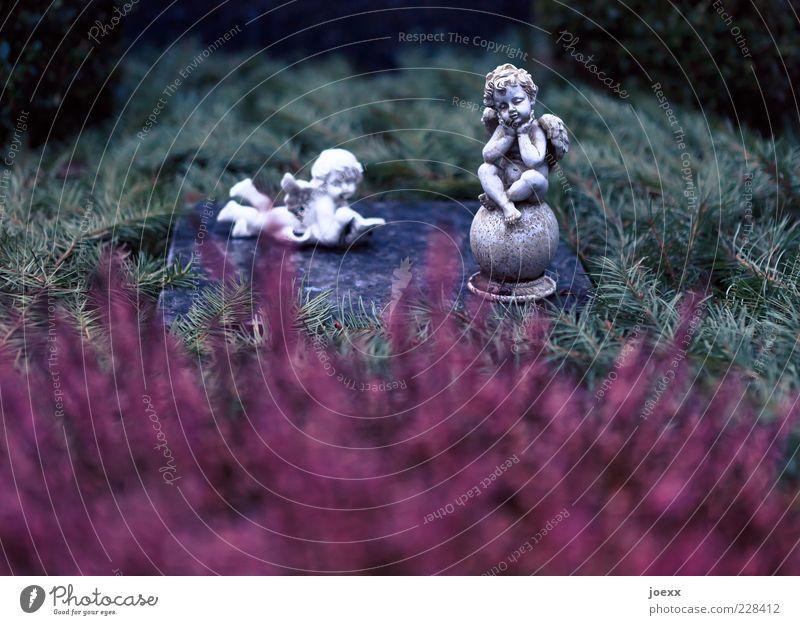 Zusammen sein Stein Zeichen Denken liegen warten alt dunkel grau grün rot Gefühle trösten ruhig Trauer Tod Traurigkeit verlieren Grab Engel Symbole & Metaphern