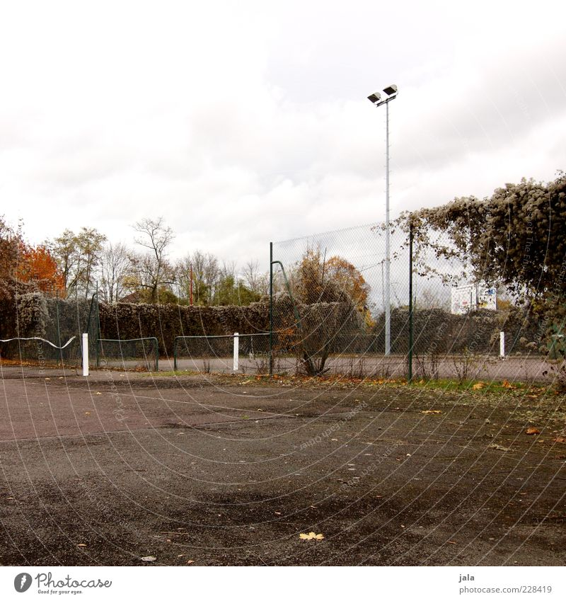 grand slam Himmel Pflanze Herbst trist Asphalt Zaun Tennisnetz Laternenpfahl Flutlicht Ballsport Sportstätten Tennisplatz