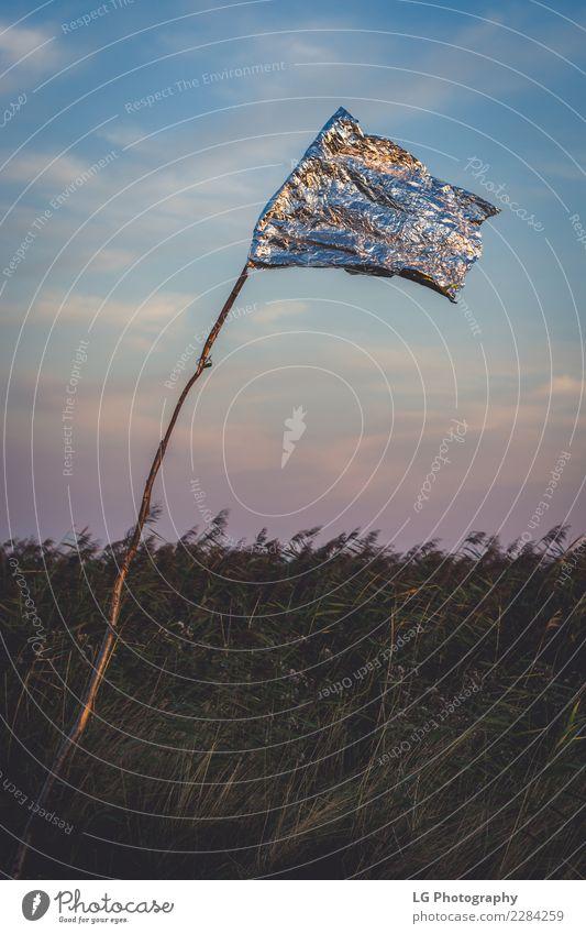 Goldene Flagge reflektierend schön Freizeit & Hobby Spielen Ferien & Urlaub & Reisen Tourismus Sommer Club Disco Sport Golf Ruhestand Natur Landschaft Pflanze