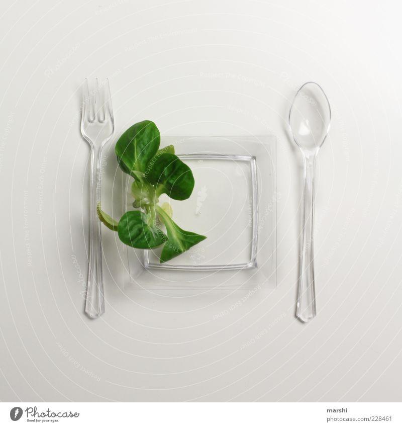 Salatdiät Lebensmittel Salatbeilage Ernährung Picknick Bioprodukte Vegetarische Ernährung Diät Geschirr Teller Besteck Gabel Löffel Gesundheit grün weiß