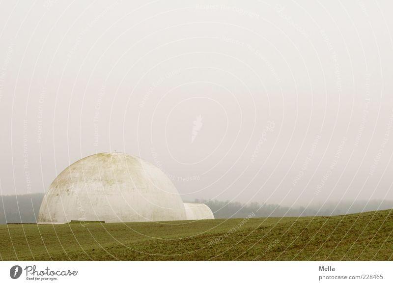 White House grau Gebäude Landschaft Feld Nebel Umwelt trist rund außergewöhnlich Kugel Iglu