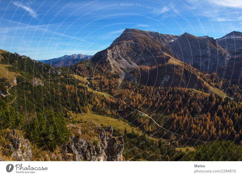 Jenner (Umgebung des Berges) Berge u. Gebirge Alpen Deutschland Himmel Landschaft mount wandern Bayern Berchtesgaden Watzmann Panorama (Aussicht) Ober...