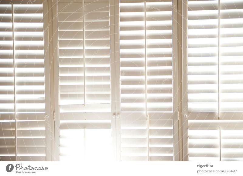 Verschlusslampe Fensterladen weiß Licht Lampe leuchten Nachmittag Sonnenlicht Schönes Wetter Sonnenschein Blendung Linie 4 Hintergrundbild Tür Knauf liegen