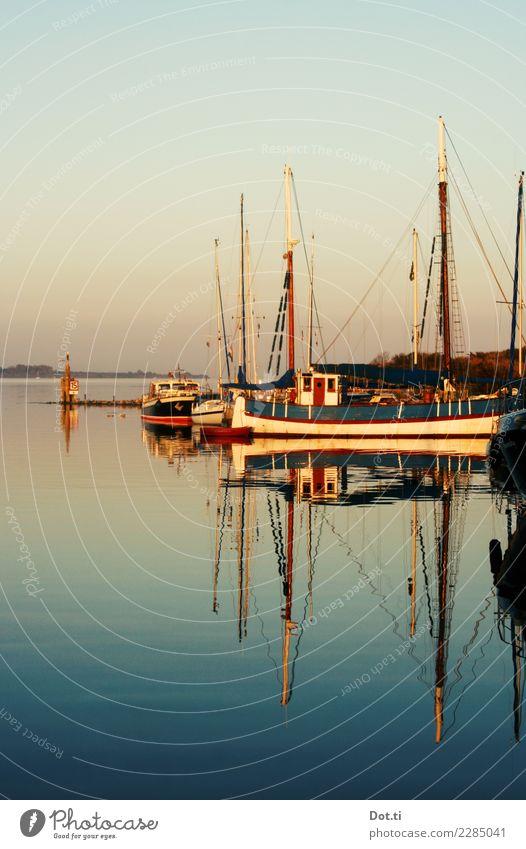 der Fische viel gefangen sind Küste Bucht Nordsee Meer Schifffahrt Fischerboot Segelschiff Hafen Ferien & Urlaub & Reisen Idylle Natur ruhig