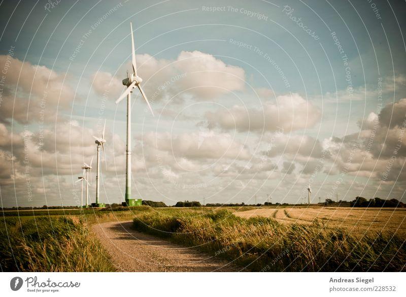 Nordfriesland Himmel Natur Sommer Wolken Ferne Wiese Umwelt Landschaft Gras Wege & Pfade Feld frisch natürlich Energiewirtschaft Klima Wandel & Veränderung